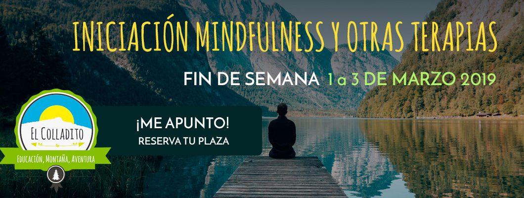 Iniciación Mindfulness y Otras Terapias